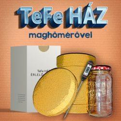 TeFe Ház – Érlelő + Maghőmérő (digit.)