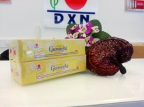 Ganozhi fogkrém 4x40g