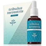 Tribulus Terrestris Forte- 30 ml